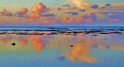Michele Penner - Sunset Water Color