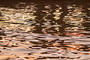 James Tanforan - Sunset Water Patterns