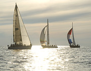 Genoa Prints - Sunset yacht race Print by Felixco
