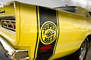 Super Bee Photos - Super Bee by Dave Amadio
