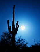 United Photo Prints - Super Full Moon With Saguaro Cactus in Phoenix Arizona Print by Susan  Schmitz