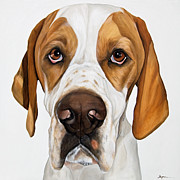 Droopy Framed Prints - Super Model Droopy Dogz Framed Print by Model Dogz
