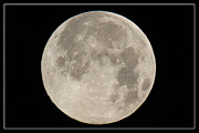 500mm Prints - Super Moon 2013 Print by Bob Hislop