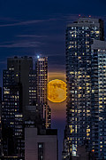 Moonscape Framed Prints - Super Moon Rises Over The Big Apple Framed Print by Susan Candelario