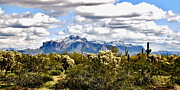 After Snowstorm Prints - Superstitions With Snow Panorama Print by Marilyn Smith