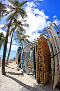 Surf And Sun Waikiki Print by DJ Florek