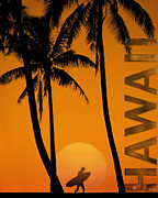 Surf Silhouette Prints - Surf Hawaii Print by Edmund Nagele