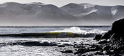 Florian Walsh - Surf Ireland