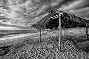Beach Shack Prints - Surf Shack - Black and White Print by Peter Tellone