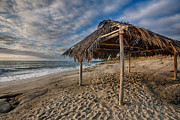 Beach Shack Prints - Surf Shack Print by Peter Tellone