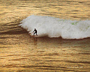 Surfer Magazine Art - Surf the Golden Wave form the book MY OCEAN by Author and Photographer Laura Wrede