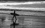 Surf Silhouette Prints - Surfer at Palm Beach Print by Sheila Smart