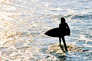 Surf Silhouette Posters - Surfer Dude Poster by Lifestyle Photos By Tara