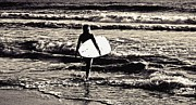 Scott Allison - Surfer Girl