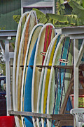 Surfboards Posters - Surfin USA Poster by Douglas Barnard