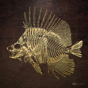 Surgeonfish Posters - Surgeonfish Skeleton in Gold on Brown  Poster by Serge Averbukh