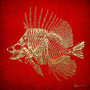 Surgeonfish Posters - Surgeonfish Skeleton in Gold on Red  Poster by Serge Averbukh
