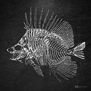 Surgeonfish Posters - Surgeonfish Skeleton in Silver on Black  Poster by Serge Averbukh