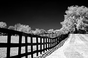 Surreal Infrared Dreamy Landscape Prints - Surreal Black White Infrared Fence Landscape Print by Kathy Fornal