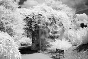 Dreamy Infrared Posters - Surreal Dreamy Ethereal Black and White Infrared Garden Landscape Poster by Kathy Fornal