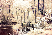 Dreamy Sepia Nature Photos Posters - Surreal Dreamy Infrared Nature Bridge Landscape Poster by Kathy Fornal
