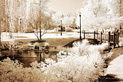 Dreamy Sepia Nature Photos Posters - Surreal Dreamy Infrared Sepia Park Landscape Poster by Kathy Fornal