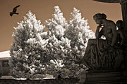 Surreal Infrared Sepia Nature Photos - Surreal Ethereal Dreamy Infrared Sepia Female Statue Nature Ravens Landscape by Kathy Fornal