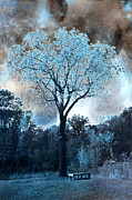 Fantasy Art Nature Photos Posters - Surreal Fantasy Dreamy Blue Fairytale Tree Nature Landscape - Surreal Solarized Blue Trees Poster by Kathy Fornal