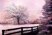 Infrared Nature Art Prints Photos - Surreal Fantasy Dreamy Pink Infrared Trees and Nature Landscape  by Kathy Fornal