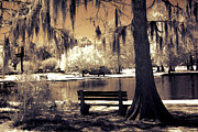 Surreal Infrared Sepia Nature Photos - Surreal Fantasy Ethereal Infrared Sepia Park Nature Landscape  by Kathy Fornal
