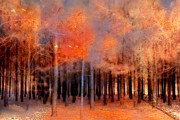 Fall Photos Posters - Surreal Fantasy Ethereal Trees Woodlands Nature  Poster by Kathy Fornal