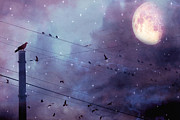 Ravens And Crows Photography Photos - Surreal Fantasy Gothic Raven Moonlit Starry Night - Raven Birds On Powerline With Moon and Stars  by Kathy Fornal