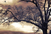 Surreal Fantasy Trees Landscape Posters - Surreal Fantasy Gothic South Carolina Tree Bird Poster by Kathy Fornal