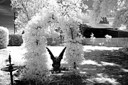 Fantasy Surreal Spooky Photography Framed Prints - Surreal Fantasy Infrared Photograph of Gargoyle In Park Landscape Arbor Nature Landscape  Framed Print by Kathy Fornal