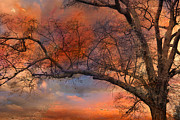 Fall Photos Posters - Surreal Fantasy Sunset Trees Ethereal Landscape Poster by Kathy Fornal