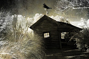 Ravens And Crows Photography Prints - Surreal Gothic Infrared Old Building With Raven Print by Kathy Fornal