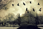 Gothic Surreal Framed Prints - Surreal Gothic Spooky Haunting Gate With Ravens Framed Print by Kathy Fornal