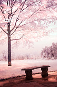 Surreal Infrared Photos By Kathy Fornal. Infrared Prints - Surreal Infrared Dreamy Pink and White Park Bench Tree Nature Landscape Print by Kathy Fornal