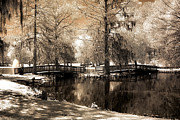 Surreal Infrared Sepia Nature Prints - Surreal Infrared Sepia Bridge Nature Landscape - Edisto Gardens Orangeburg South Carolina Print by Kathy Fornal