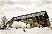 Old Barns Photo Prints - Surreal Infrared Sepia Old Crumbling Barn Landscape - The Passage of Time Print by Kathy Fornal