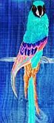 Surreal Parrot Print by Eloise Schneider