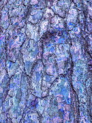 Strong Vertical Images Prints - Surreal Patterned Bark in Blue Print by Gill Billington