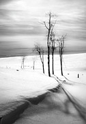 Theresa Leigh Photography Posters - Surreal Snowscape 2 Poster by Theresa Tahara