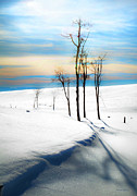 Snow Scene Prints - Surreal Snowscape Print by Theresa Tahara