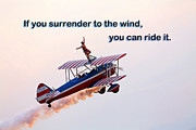 Counseling Posters - Surrender to the Wind Poster by Mike Flynn