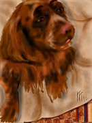 Lois  Ivancin Tavaf - Sussex Spaniel
