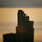 Peta Thames - Swallow Lookout