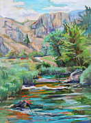 Canyon Paintings - Swallow Tail River Canyon  plein air by Marie Massey