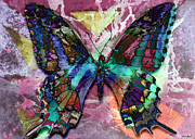 Catherine Mixed Media Framed Prints - Swallowtail Framed Print by Catherine Harms