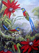 Passiflora Paintings - Swallowtail Hummingbirds by Amanda  Stewart
